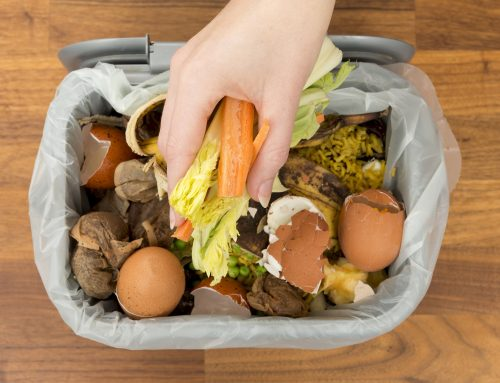 Reading rolls out food waste service